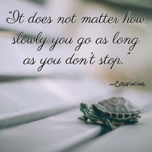 """It does not matter how slowly you go as long as you don't stop."" ~Confucius"