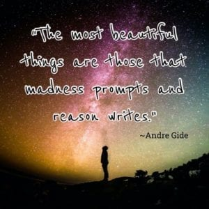 """The most beautiful things are those that madness prompts and reason writes."" ~Andre Gide"