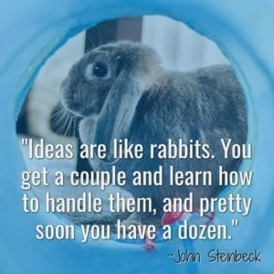 """Ideas are like rabbits. You get a couple and learn how to handle them, and pretty soon you have a dozen."" ~John Steinbeck"