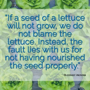 """""""If a seed of a lettuce will not grow, we do not blame the lettuce. Instead, the fault lies with us for not having nourished the seed properly."""" ~Buddhist proverb"""